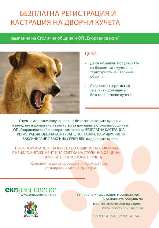 Плакат на Екоравновесие